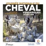 Journée du cheval - Affiche de la journée internationale du cheval, des cheveaux et des manadiers qui traversent une rivière