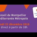 Embedded thumbnail for Conseil de Métropole extraordinaire du jeudi 22 décembre 2016
