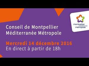 Embedded thumbnail for Conseil de Métropole du 14 décembre 2016