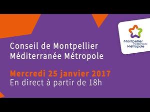Embedded thumbnail for Conseil de Métropole du 25 janvier 2017