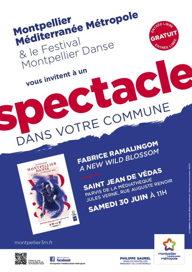 Spectacle à St Jean de Védas