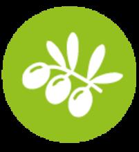 Forum métropolitain de l'Agroécologie et de l'Alimentation