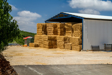 Conférence-débat « L'accès au bâti agricole un nouvel enjeu pour le développement d'une agriculture nourricière locale »