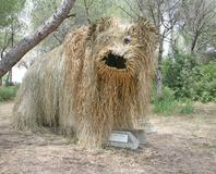 Clapiers - Le monstre cabane