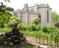 Pignan - abbaye de Vignogoul